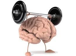 hjärngympa